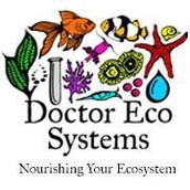 Doctor Eco Systems
