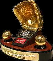 The golden glove award