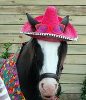 We have large sombreros for the big animals