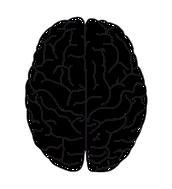 Brain dominance. left vs right brain thinkers