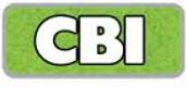 Community Based Instruction- CBI Fridays