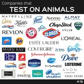 Still, Lots of Companies are Testing on Animals!