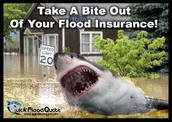Flood insurance info