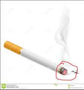 Discarded cigarettes can start wildfires.