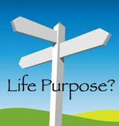 Effects of not having a purpose in life?