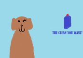Best Dog Shampoo in Town! DO you wanta cleaner dog?