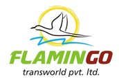 About Flamingo Team, Tour Packages, Visa and More