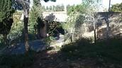 הכניסה הראשית ליד ושם בחלקו המערבי של הר הרצל