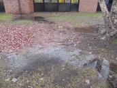 Our Storm Water Run-Off Problems