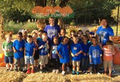 Primary Visits Pumpkin Patch
