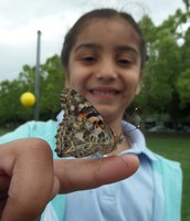 Letting Our Butterflies Go