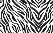 Love Zebra Print