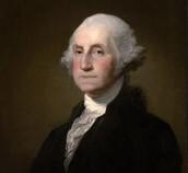The Brave George Washignton