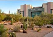 Mayo Clinic, Arizona