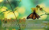 2. Spiritual Life