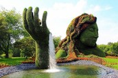 Bontanical Garden