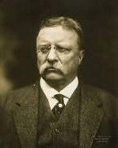 When and where was theodore roosevelt born