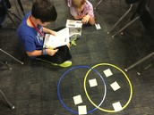 Comparing and Contrasting!