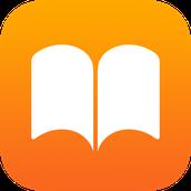 Share as an Enhanced eBook