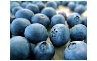 bluberry
