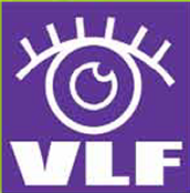 Visual Literacy Festival