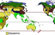Here are more deserts