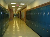 Empty Lockers