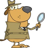 What are detectives?