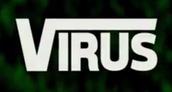Virus: Senior Advice Column