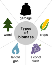 How is biomass formed and used?