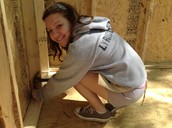 building our specialty sheds
