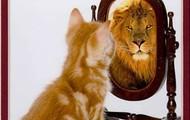 See ur self