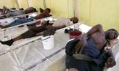 Victims of Cholera