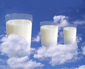 Milk (Dairy Products)