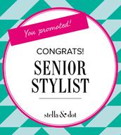 Senior Stylists