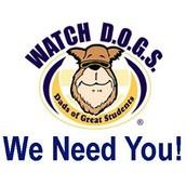 Watch D.O.G.S. at Ethridge