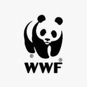JOIN THE WWF ACADEMY EVERY SUNDAY AND MONDAY AT 5PM