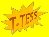 T-TESS Workshop