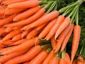 Lots of carrots.