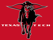 Texas Tech - In state public
