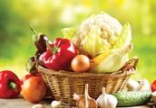 גל אמיר בסדנאת תפירה