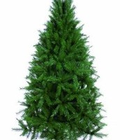 Christmas Tree: Greenland