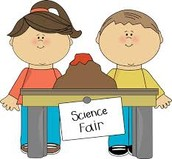 Science Fair Fun!