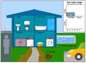 Water Usage At Home