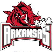 #! University Of Arkansas