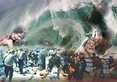 The Sumatra Tsunami