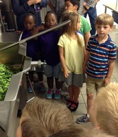 Learning about vegetables!
