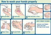 Follow this when washing hands.