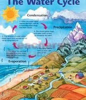 water cycle disruption
