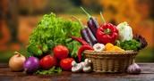 Imports- Food